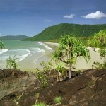 beach daintree rain forest queensland